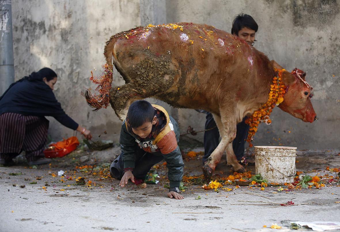 PC: Navesh Chitraker/ Reuters